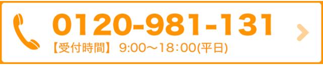 0120-981-131
